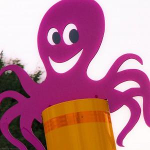 Octopuspaal